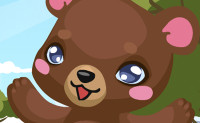 Bears Games