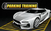 Parkeer Training
