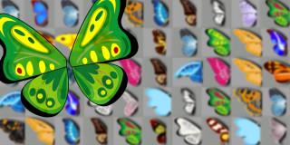 Schmetterlingsspiel 123