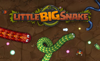Little Big Snake