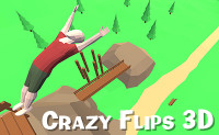 Crazy Flips 3D